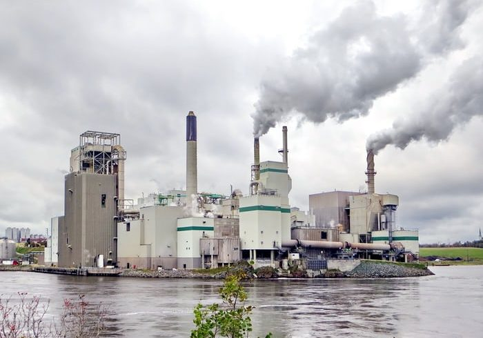 Carbon Credit: How Do They Help to Fight Global Warming?
