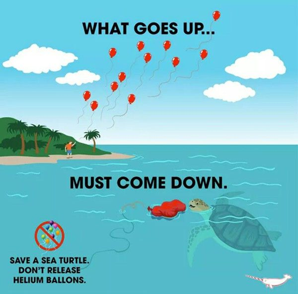 What goes up must come down somewhere, in this case, the balloons that we release could land literally anywhere.
