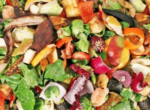 organic waste can cause negative environmental and health impacts