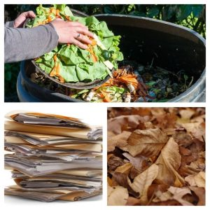 Examples of organic materials that can be processed through vermicomposting.