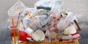 Plastic Free July News