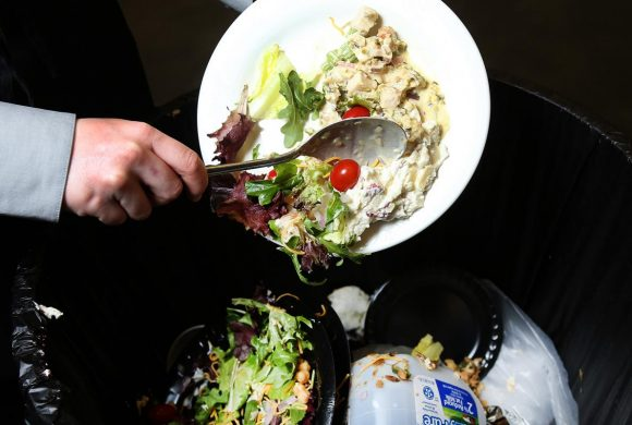 The Difference between Food Loss vs Food Waste and How to Avoid It
