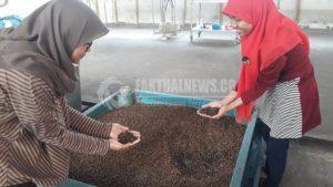 Sejumlah-wanita-di-Sidoarjo-mengolah-sampah-organik-untuk-pakan-ternak-640x360