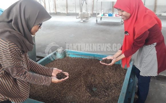 """FaktualNews.co: """"BSF: A Solution to Overcome Organic Waste, A Low-Cost Animal Feed Alternatives"""""""