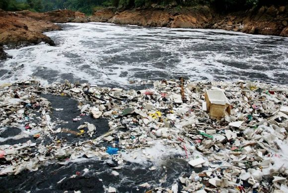 Get To Know: How Waste Can Affect Forests and Water Sources