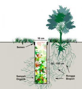 Ilustrasi Lubang Resapan Biopori